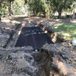 Leach drains Perth